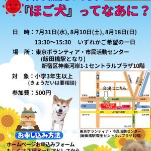 【拡散希望】手作り新聞をつくろう!夏休み自由研究「保護犬ってなあに?」のお知らせ