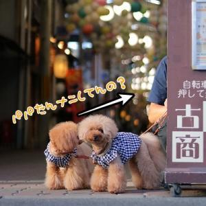 昭和レトロな商店街♪