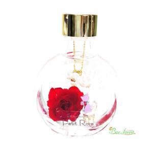 【Petit Rose】おすましCat♪