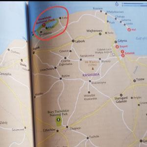 ポーランド スウォヴィンスキ国立公園「大砂丘」で訓練!?(夏の家族旅行)