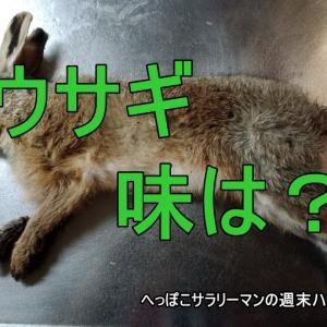 ウサギ(野うさぎ)の味はどうなの?食べてみました!