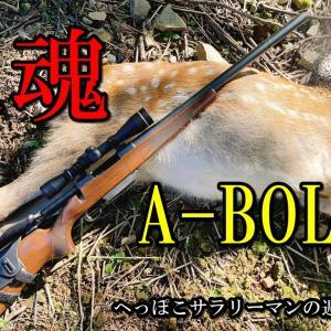 A-BOLTで初の獲物。ニホンジカのネックを1発。