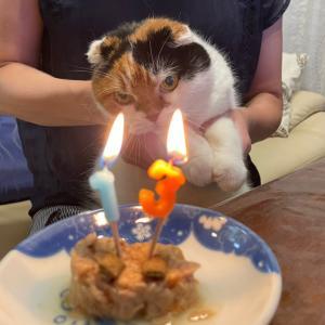 アロエ姐さんお誕生日‼️
