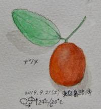 https://hitakijo.exblog.jp/