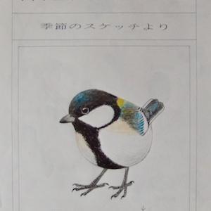 #自然画 『ペン画集』 38