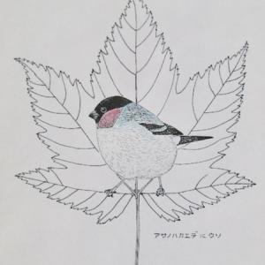 『#木の葉絵 #leafart 』 麻の葉楓・鷽
