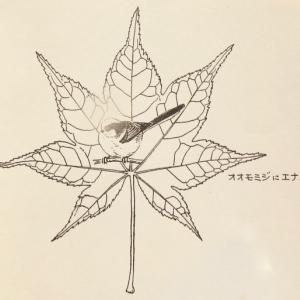 『#木の葉絵 #leafart 』 大紅葉 ・柄長