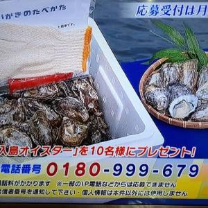 12/19・・・旅サラダプレゼント(月曜9時まで)