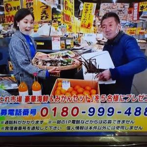 12/26・・・旅サラダプレゼント(月曜9時まで)