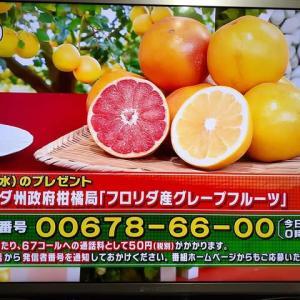 1/13・・・ひるおびプレゼント(本日深夜0時まで)