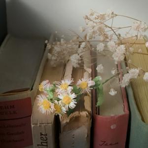去年作って今年新しく作り直したお花たち