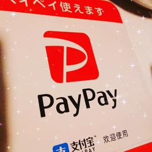 PayPay決済始めました!!