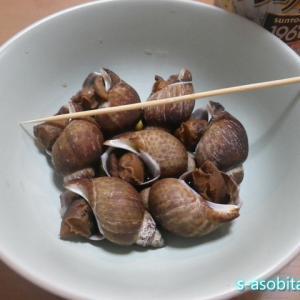 黒バイ貝を圧力鍋で煮たら身は柔らかくなるのか