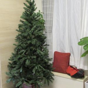 クリスマスツリー届きました。
