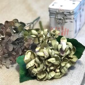 雑貨屋さんで見つけたリアルな造花と可愛いムーミン缶(*´꒳`*)&フローラ ボウルがお買い得に♡