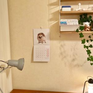 寝室に可愛い動物が仲間入り(*´꒳`*) & scopeさんでフライングポチ♫
