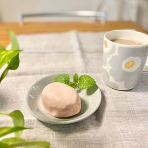 【ダイソー】人気のケーキと新入りマグでおうちカフェ♡ & ワンコの誕生日とトリミング(´ω`*)