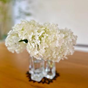 大好きな紫陽花!アナベルをダイニングに♡と初夏の庭のお花たち(*´꒳`*)