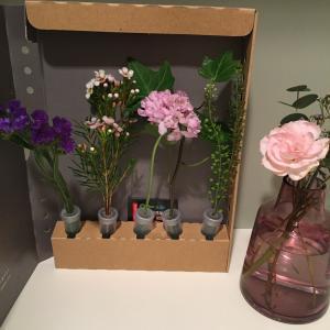お花が届いていました〜