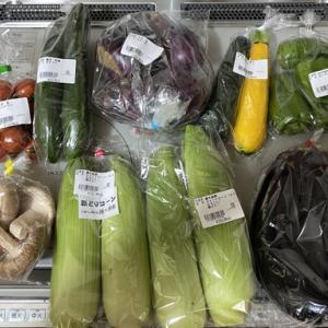 旬の野菜を求め! 旬彩蔵 山崎へ