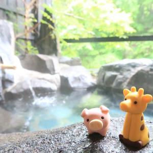 那須、日光で1泊2日。名物グルメ・絶景・温泉を楽しむドライブ旅行【栃木県】