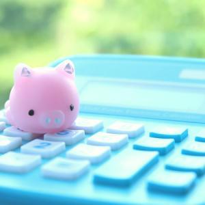 投資信託を買い続けて丸5年。損益率と積立投資しているファンド【老後資金】