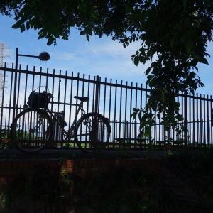 自転車活動にはまったく不適