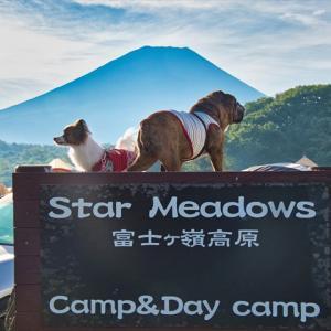 富士ヶ嶺高原キャンプ場【富士山】