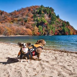 中禅寺湖の紅葉とカヤック