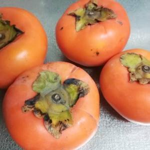 柿をスイーツに変える方法