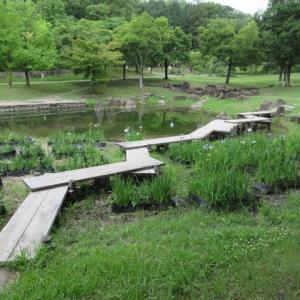 散歩・於大公園