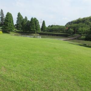 於大公園・広場と富士山