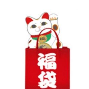 福袋【2020年】デパート・百貨店のネット予約はいつから?おすすめ【8選】