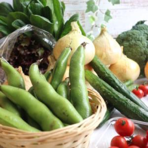 【産直お取り寄せ】全農のJAタウンがおすすめ!無農薬の野菜が美味しくてオトクだった