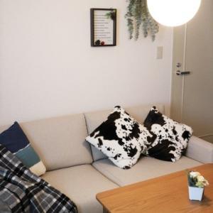 毎日使うものだから、無印良品のソファーの選び方とお得な購入方法