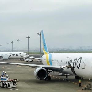 ANAの特典航空券でAIRDOに搭乗して来ました!SFC特典もフル活用できました!