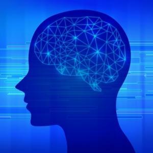 脳内シェア
