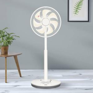 まひろ、ガラポン抽選会で扇風機を当てる!