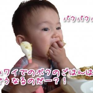 赤ちゃん連れハワイ旅行でベビーフードはどうすればいいの?ハワイに持ち込めるもの持ち込めないもの