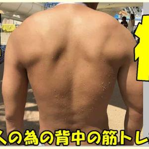 腰痛持ちでも背中の筋トレは安全に出来る【厳選種目を紹介】