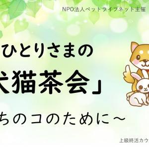 ペット終活「犬猫茶会」 ペット終生飼養確約つき賃貸住宅&介護・医療施設 ペット共生タウン