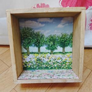 春の箱バニア