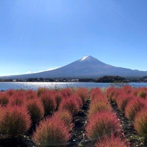 *秋をかんじる富士山満喫の旅