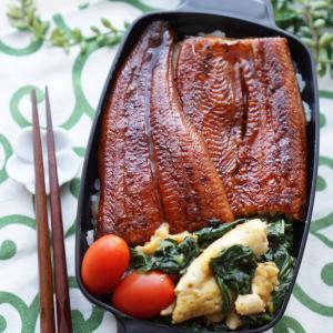 今日のパパ弁は鰻丼♪と昨日の晩ゴハンはカツ&カレー