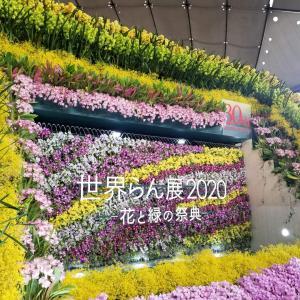 お出かけ(世界らん展2020-花と緑の祭典-)