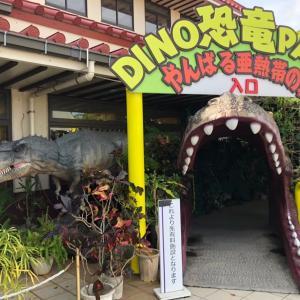 【沖縄・本部】2020年1月めんそ~れ沖縄!2人旅3日目(2)