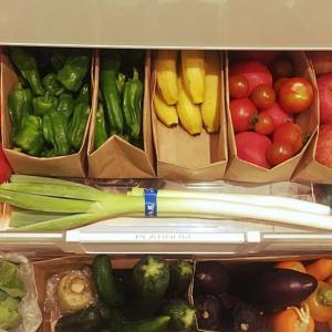 野菜室は紙袋で整理