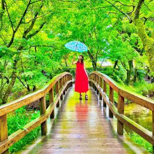 6月、雨の日の夜。『世にも奇妙な話。』