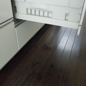 食洗機が壊れたー!(泣)