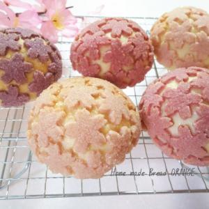 3月11日桜咲くメロンパンdeコッタlesson開催します